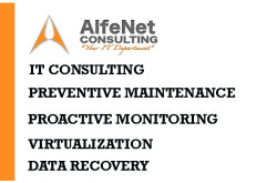 AlfeNet Consulting, Inc. - Computer Consulting Brooklyn NYC