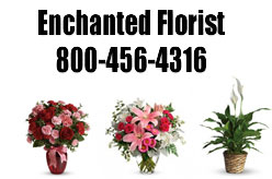 Enchanted Florist 5th Avenue Brooklyn NY New York 11209