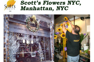 Scott's Flowers NYC – Manhattan Flower Delivery NYC