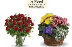 A Floral Sensation - Brooklyn, NY
