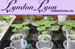Lyndon Lyon Greenhouses
