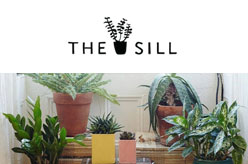 The Sill Shop NYC