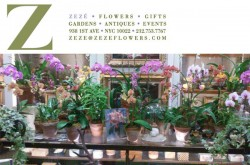 Zeze-Flowers-New-York-City
