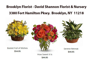 Brooklyn Florist David Shannon