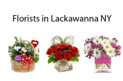 Florists in Lackawanna NY