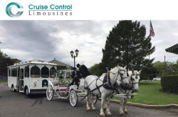 Cruise Control Limousines NY