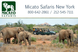 Micato Safaris New York