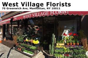 West Village Flower Manhattan NY