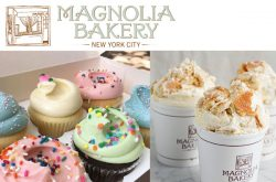 Magnolia Cupcake Shop New York