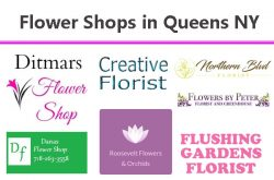 Flower Shops in Queens NY – Online Flower Delivery to Queens New York