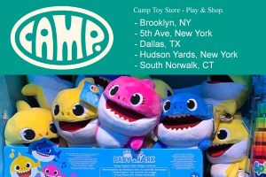 Camp Toy Store New York