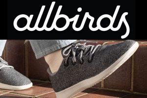 Allbirds Men's Wool Runners